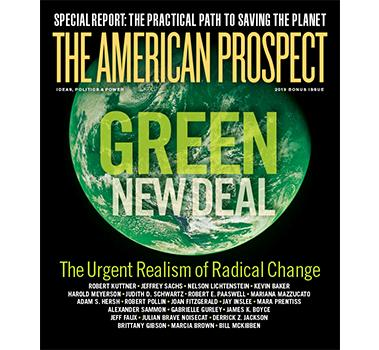 Green New Deal Cover Matted