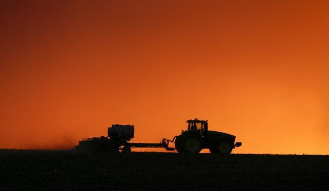 Scholten.Rural America election 2020jpg.jpg