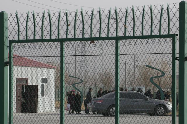 Brown-Uighur-3.jpg