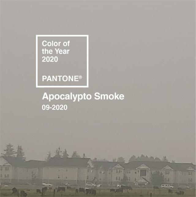 apocolypto smoke.jpg
