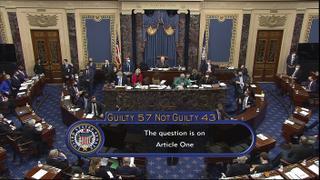 Meyerson-impeachment-021321