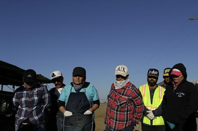 Meyerson-Farmworkers 062521.jpg