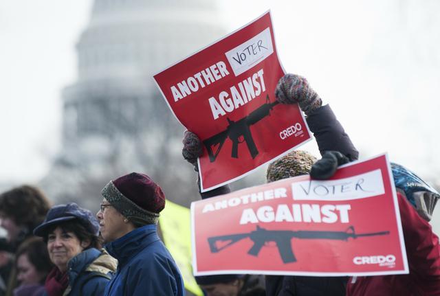 gun_protest.jpg.jpe