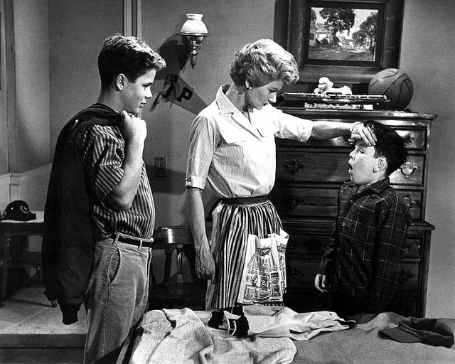 scene_from_leave_it_to_beaver_1958.jpe